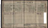 1911 Census Albert Shepherd