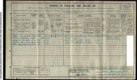 1911 Census William Henry Shepherd